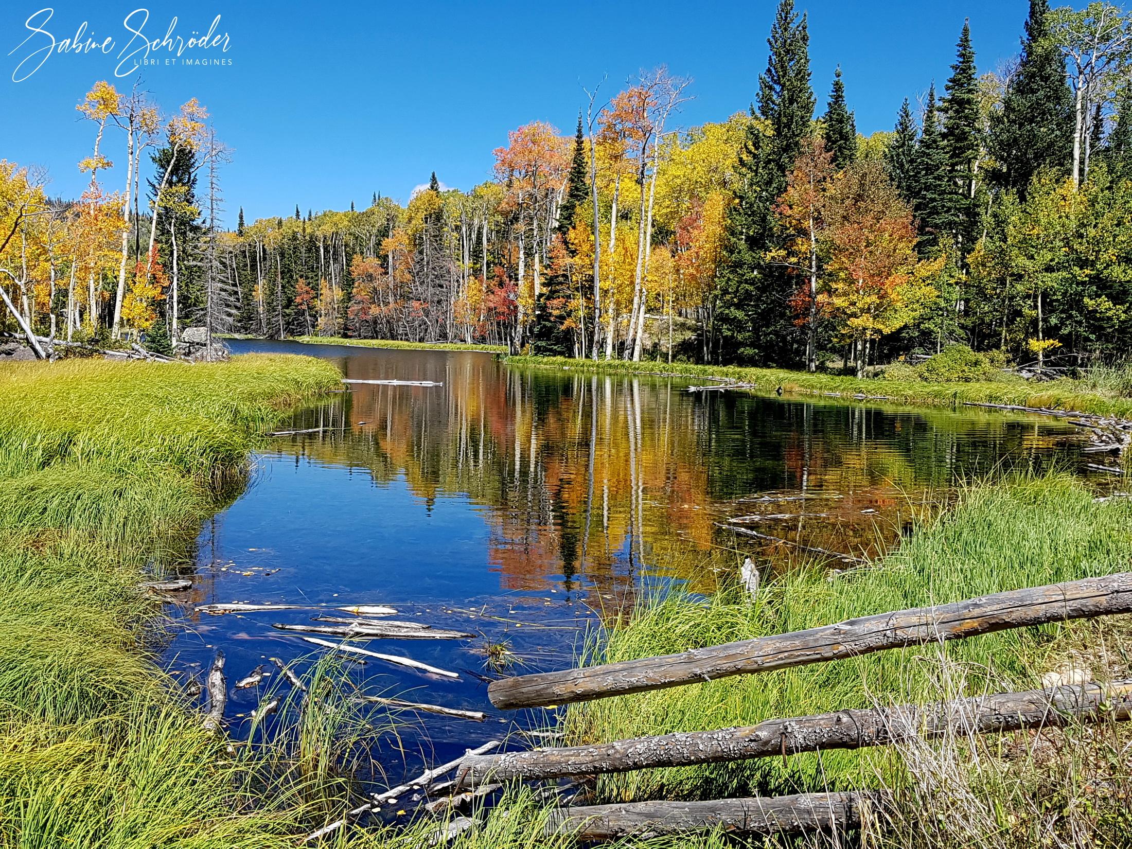 Barker Reservoir - Dixie NF